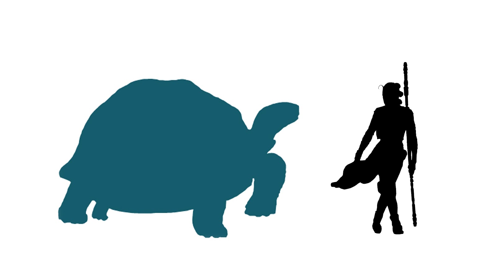 1600x880 Dispatches From Turtle Island Ancient Turtles Were Huge