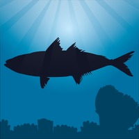 200x200 Fish Fishes Animal Animals Silhouette Silhouettes Underwater