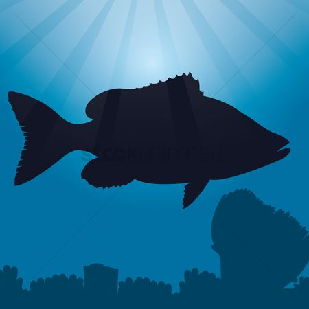 450x450 Free Underwater Silhouette Stock Vectors Stockunlimited
