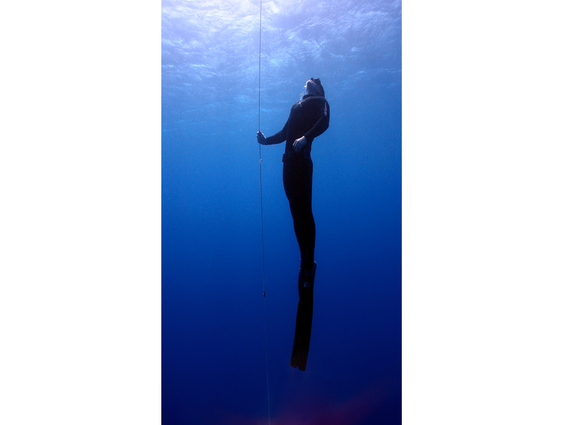 800x600 Apnoe Diving