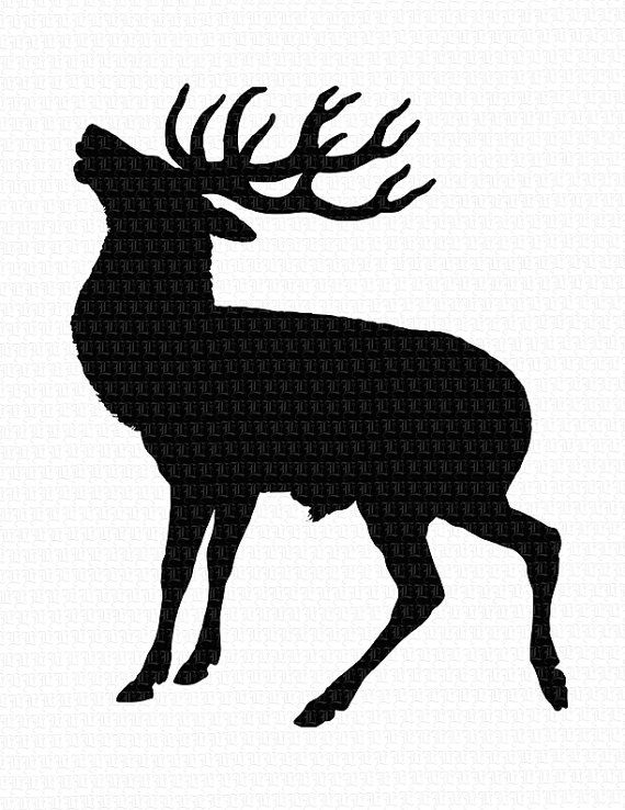 570x738 Wild Animal Deer Profile Silhouette Antique Vintage Clip Art