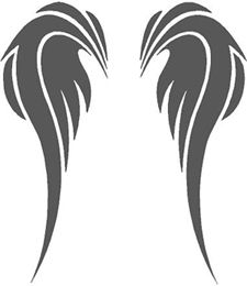 225x260 Angel Wings Drawing