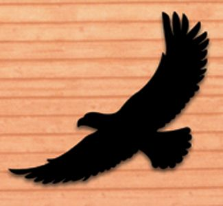 325x300 Life Size Eagle Shadow Woodcraft Pattern Everyone Will Do A Double