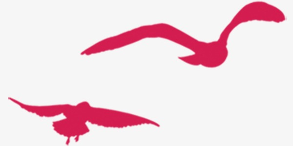 600x300 Creative Simple Red Bird Silhouette, Red, Creative, Simple Png
