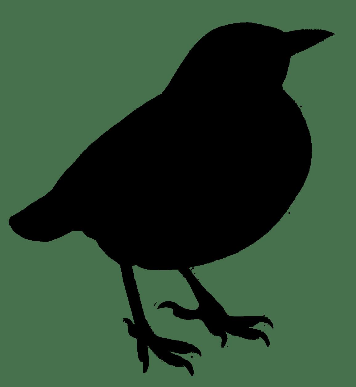 1156x1256 Bird Silhouette Clipart Transparent Png