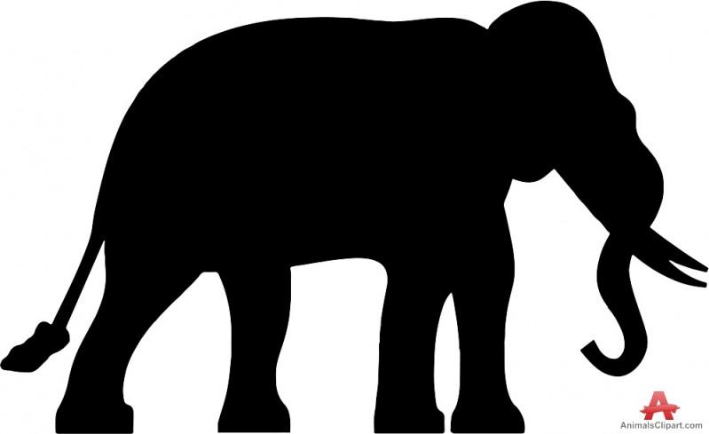 799x489 Newest Elephant Image Simple