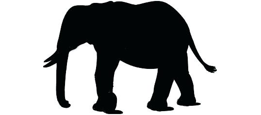 538x237 Simple Elephant Outline