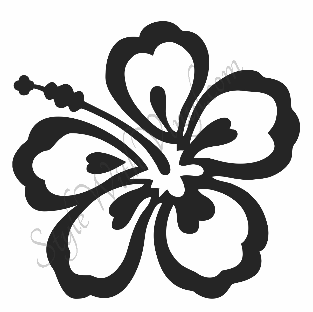 1207x1202 Drawn Hibiscus Simple