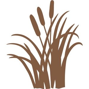 300x300 Cattails Silhouette Design, Silhouettes And Store