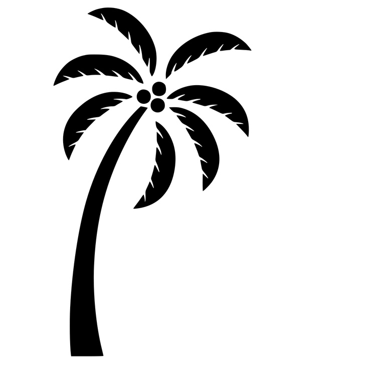 736x736 11 Simple Palm Tree Vector Images