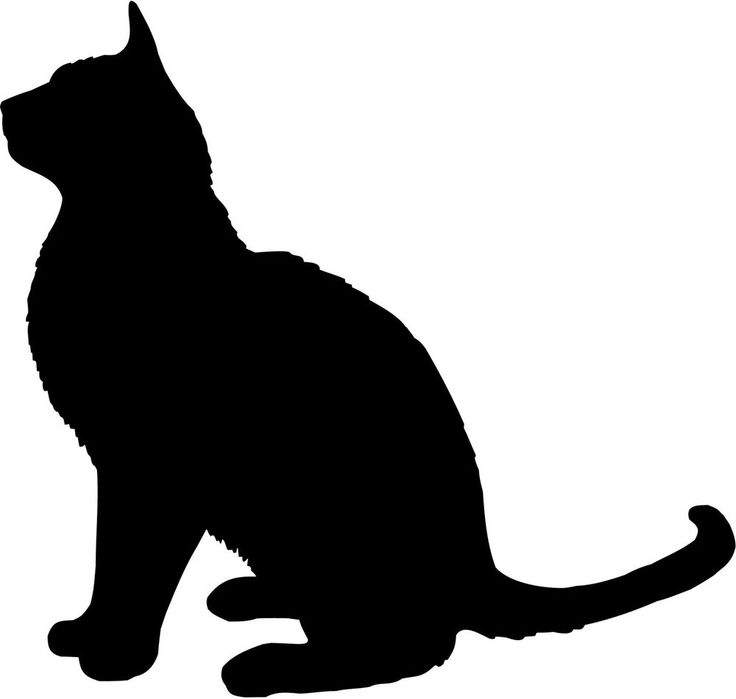 Sitting Cat Silhouette At Getdrawings Com Free For