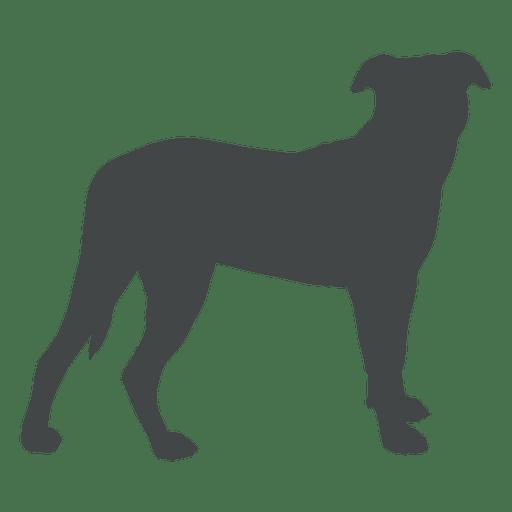 512x512 Dog Cartoon