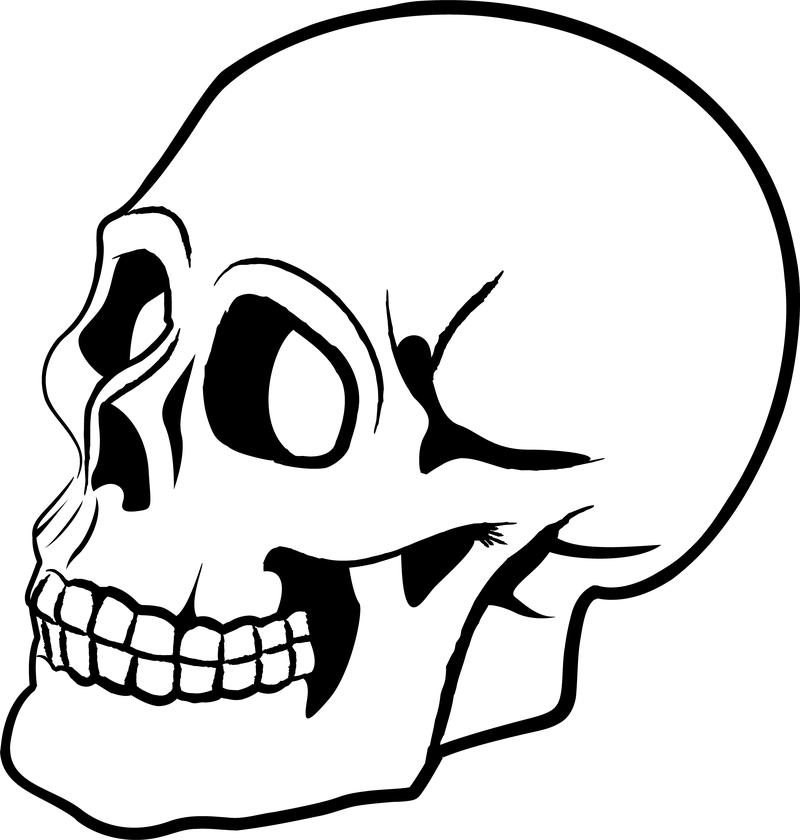 800x840 Skull Silhouette Clip Art