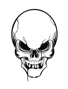 225x293 Skull Vector Free Vector 4vector