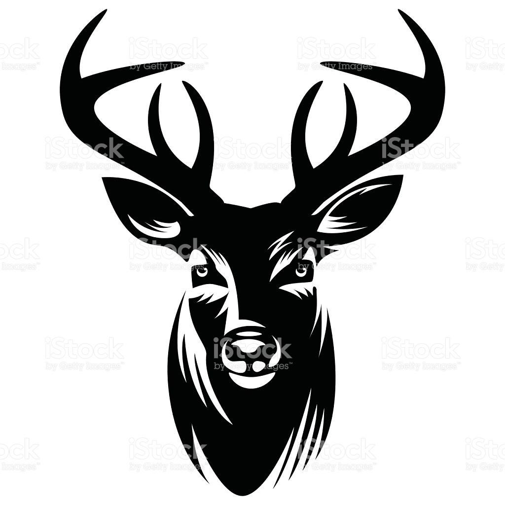1024x1024 Deer Vector Illustration Stock Art More Images Of Showy Skull