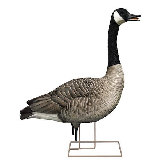 560x560 Goose Decoys