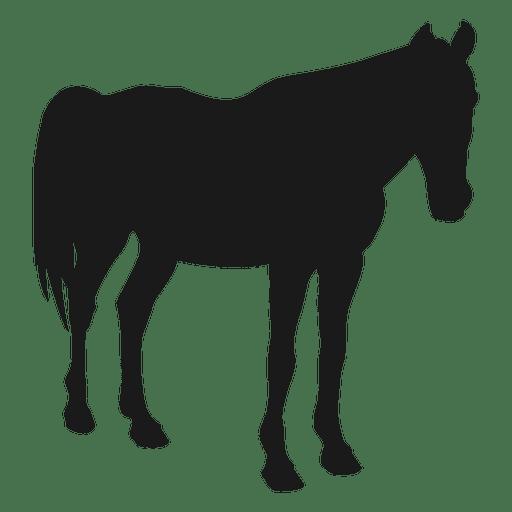 512x512 Horse Sleeping Silhouette