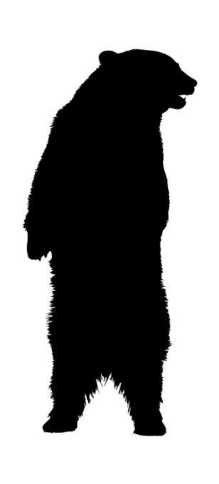 308x679 Standing Black Bear