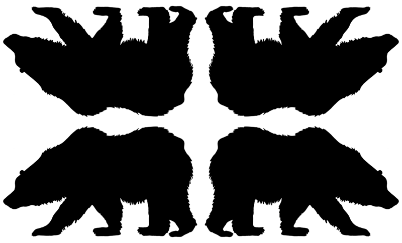 800x484 Grizzly Bear Silhouette Giftwrap