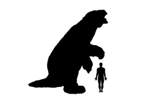 500x317 Ground Sloth Size Comparison. Age Of Mammals