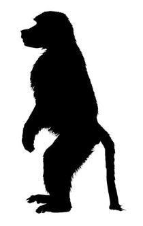 210x330 Monkey Silhouette 3 Decal Sticker