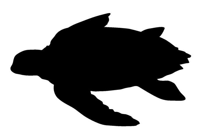 711x480 Sea Turtle Silhouette Decal Sticker