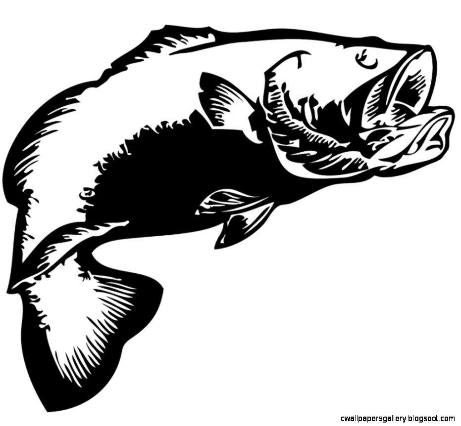 931x862 Smallmouth Bass Clip Art Wallpapers Gallery