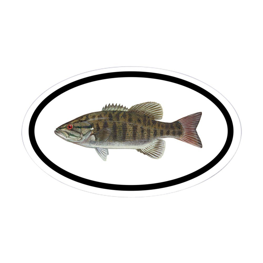 1000x1000 Buy Sticker Smallmouth Bass 11 X 14 Decal Salty Bones For Indoor