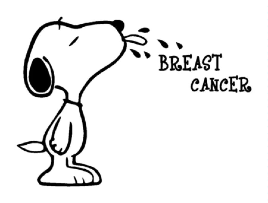 900x684 Snoopy Breast Cancer Vinyl Graphic Decal Car Window Sticker