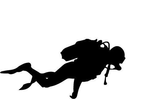 500x321 Scuba Diver Scubas, Cricut And Silhouettes
