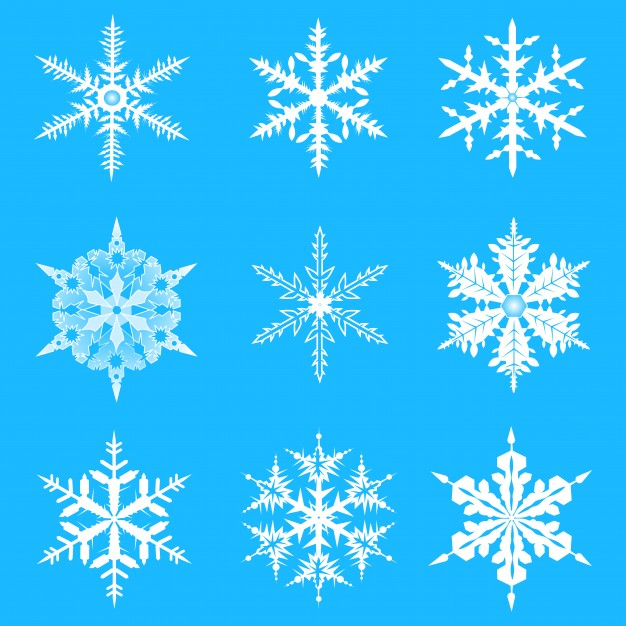626x626 Vector Snowflakes Set. Elegant Snowflakes For Christmas And New