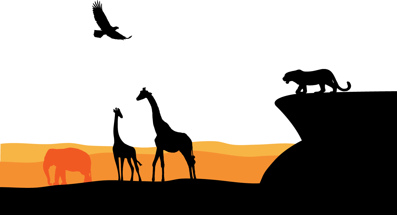 1375x745 South Africa Graphic Design