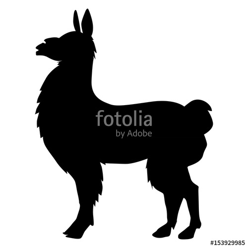 500x500 Lama Animal Of South America Stock Image And Royalty Free Vector