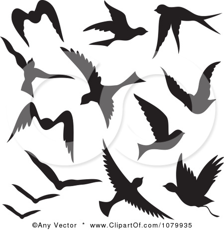450x462 Fascinating Flying Bird Silhouettes Vector Tattoo Clipart