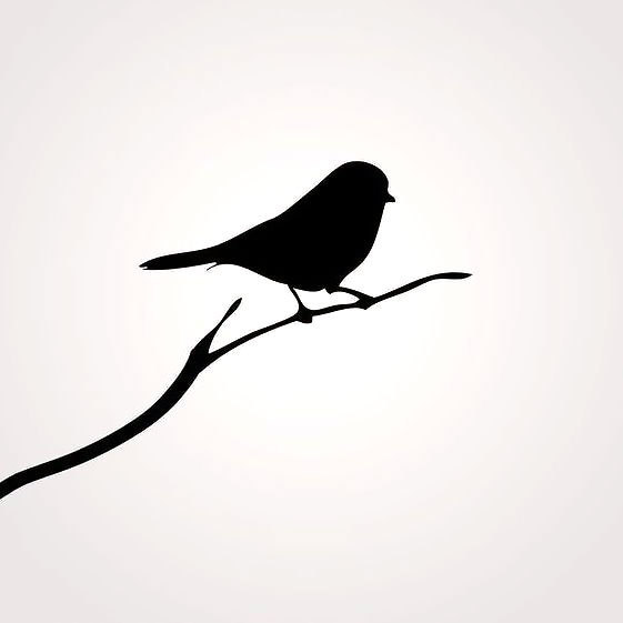 561x561 Mockingbird Tattoo Meaning And Symbolism