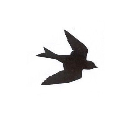 405x380 Mockingbird Silhouette