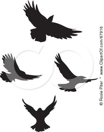355x450 Bird Silhouette Tattoo