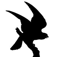200x200 Bird Silhouettes Album ~ Karen's Whimsy