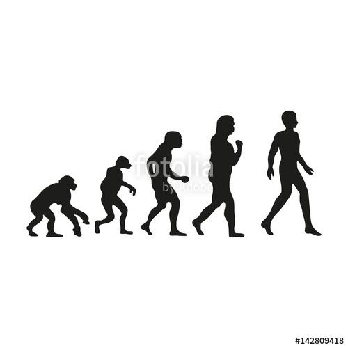 500x500 Man Evolution. Silhouette Progress Growth Development. Neanderthal