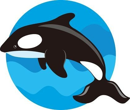 420x355 Sperm Whale Clip Art, Free Vector Sperm Whale
