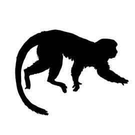 270x270 Monkey Silhouette Monkey, Silhouettes And Jewelry