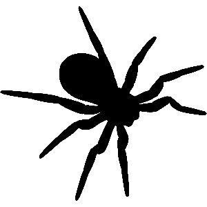 300x300 Arachnophobia Overcoming Your Fear Of Spiders Spider, Halloween