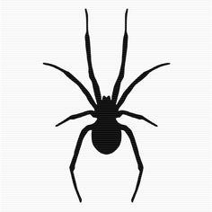 236x236 Spider Clip Art Set 4 Silhouette Scanncut Ideas