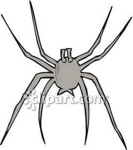 267x300 Spider Silhouette