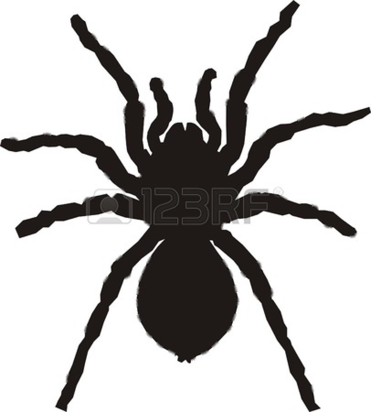 1218x1350 Spider Silhouette Stock Vector Katerinvr 1520942 Best Thebarnyard