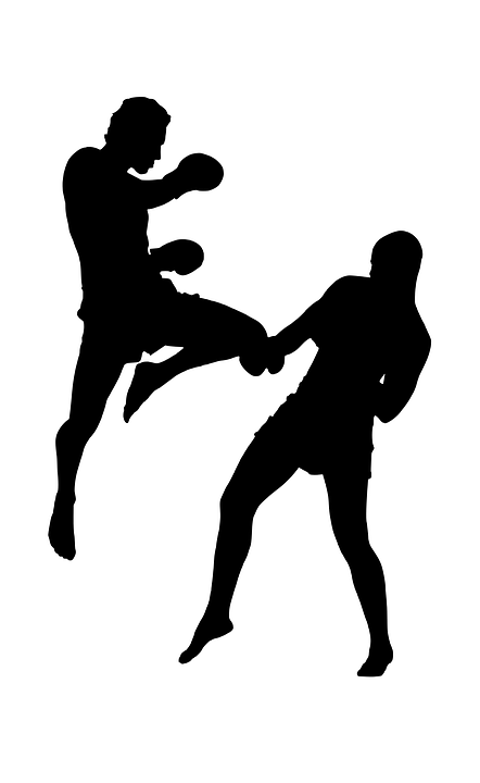 442x720 Free Photo Fight Boxing Jumping Sports Strong Men Silhouette