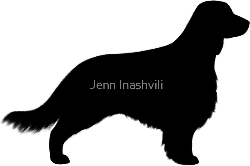 800x531 Welsh Springer Spaniel Dog Silhouette(S) Long Tail Stickers By