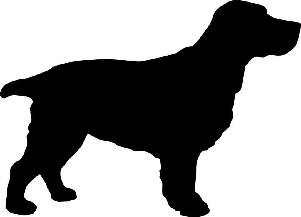 1024x738 Details About Silhouette A Cocker Spaniel Dog A Wall Art Sticker