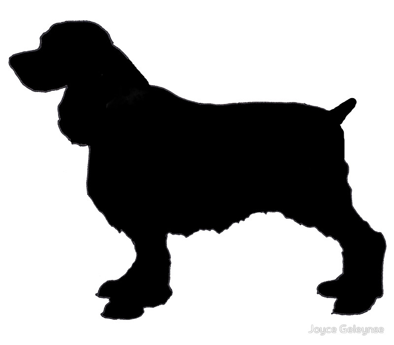 800x700 English Springer Spaniel Dog Silhouette, Freehand Drawing Art