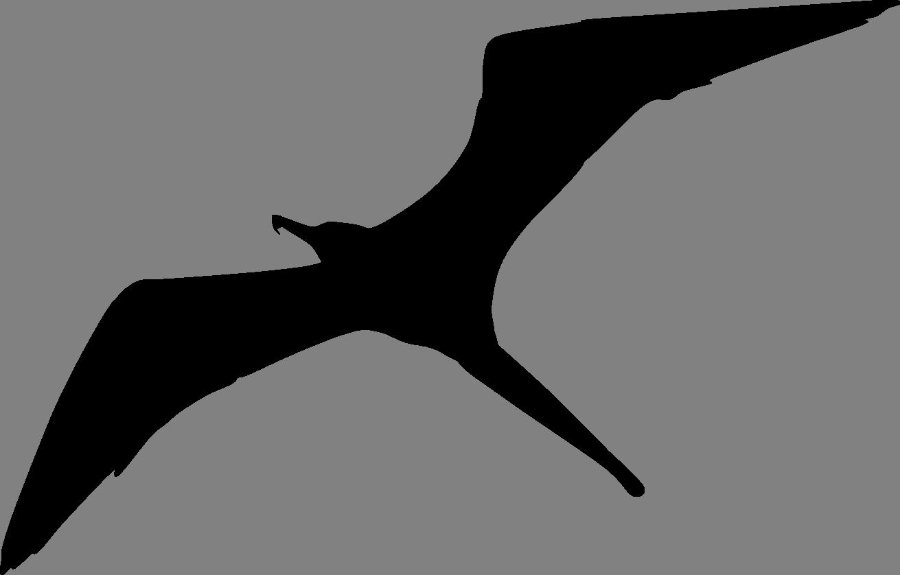 1311x838 Make A Silhouette Clipart Panda